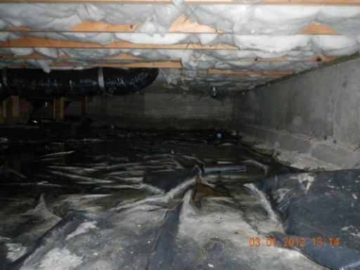 Click to find out more about Help! I've got water in my crawl space